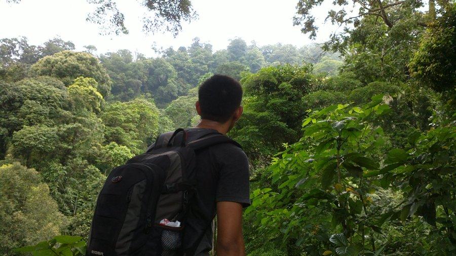 Solo Camping Di GunungPulosari
